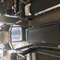 Free Motion 11.3 Treadmill